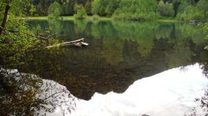 From Rattlesnake Lake